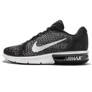 Air Max Sequent 2 (M) MEDIUM 14