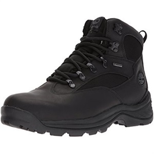 Chocorua Trail Gtx (M) MÉDIUM
